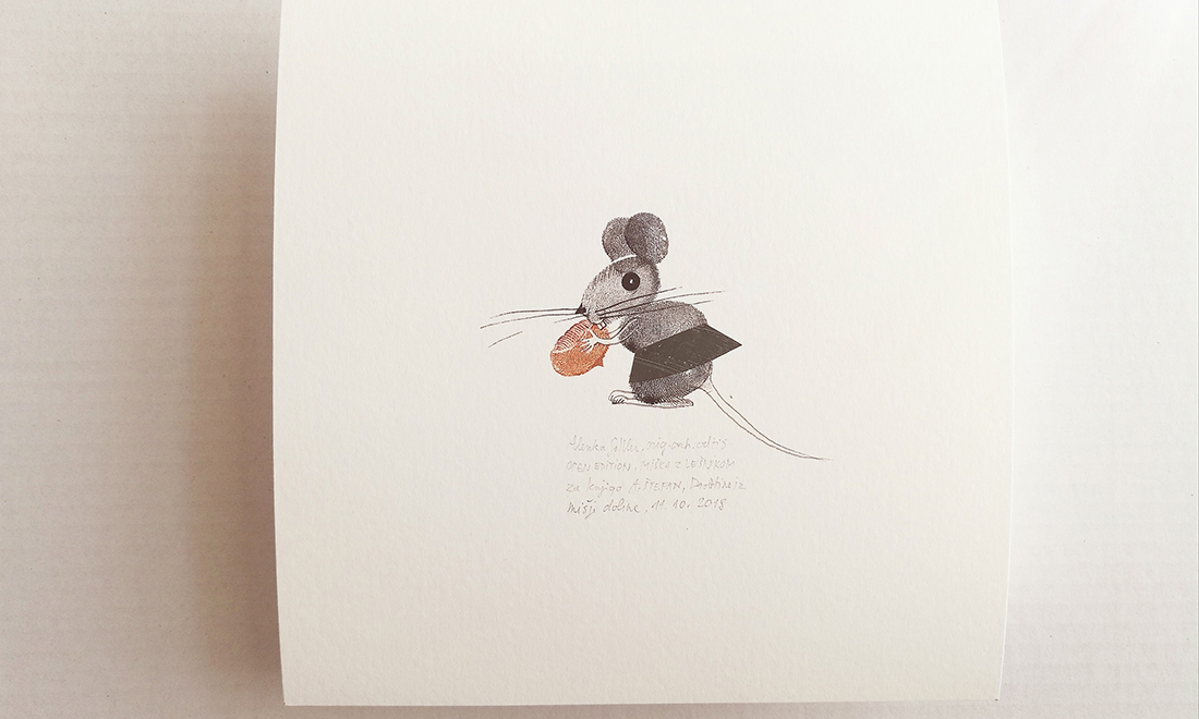 The mouse with noughats